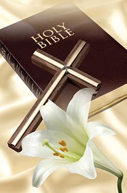 bible_sm