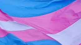 gender minorities